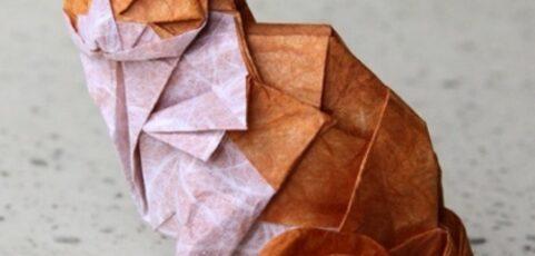 ¡¡¡Ganador del concurso de Origami!!!