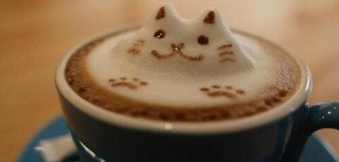 CafeCat marshmallows, o los pequeños grandes placeres de la vida  =^.  .^=